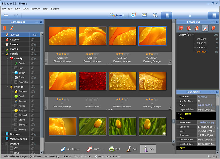 PicaJet FX screenshot